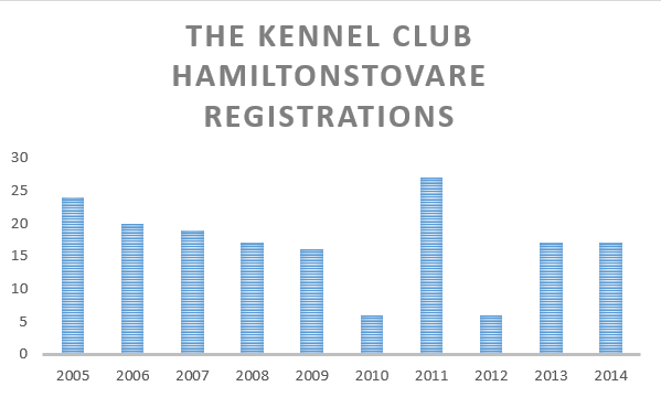 the KennelClub hamiltonhound registrations.png