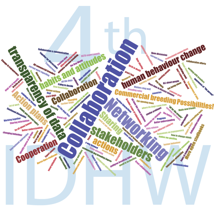 wordcloud6-5-4thidhw-key-experiences.png
