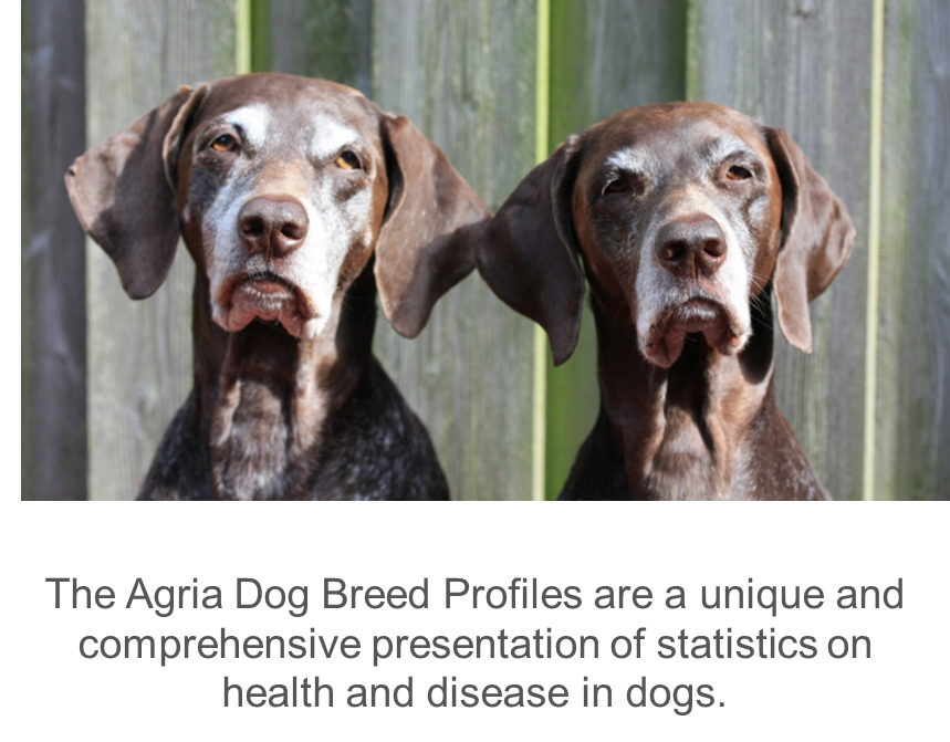 Agria_Breed_Profiles_pointers.thumb.png.