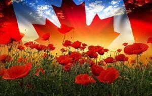 remembrance_day.thumb.jpg.71f4ccdb5cb09a