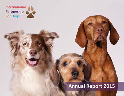 Annual  Report Cover.png