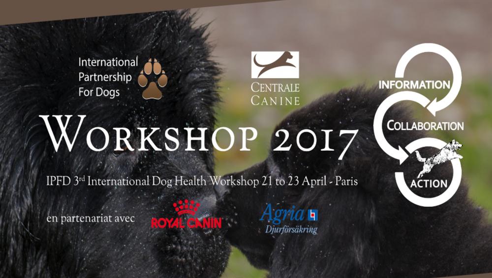 Workshop 2017.png