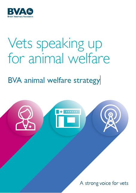 BVA-welfare-.png