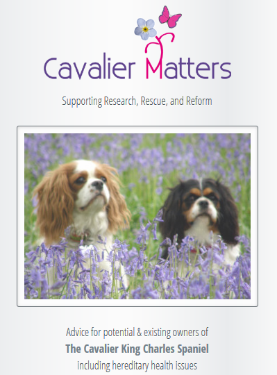 cavalier matters.PNG