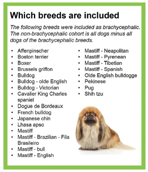 breedsbrachynwstudy.png