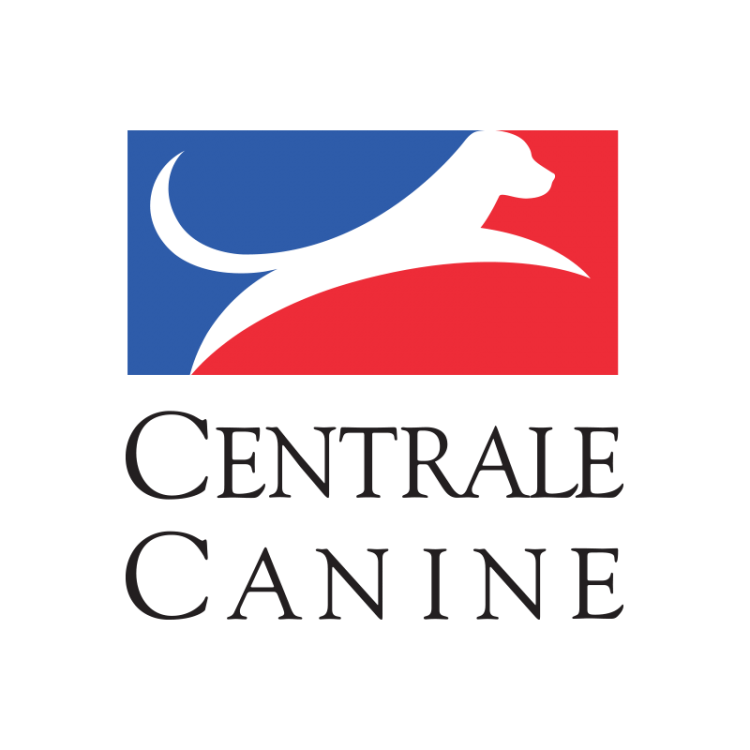 caninecentraletransparent800x800.png