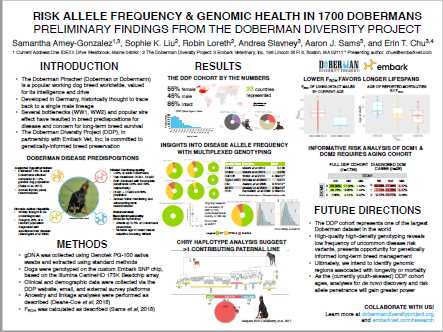 RISK ALLELE FREQUENCY & GENOMIC HEALTH IN 1700 DOBERMANS.png