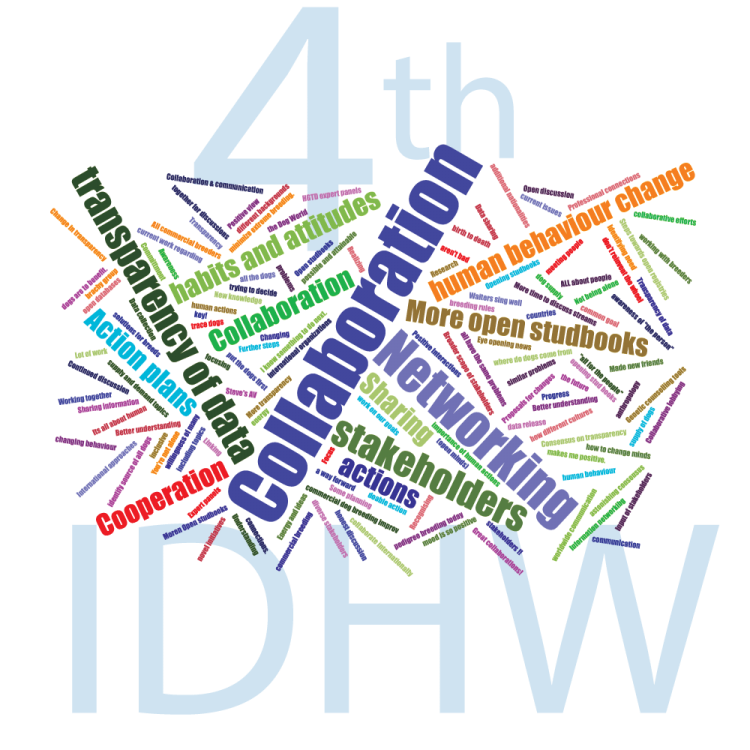 wordcloud-poll-4th-idhw.png